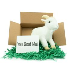 Cute stuffed animals and personalized notes