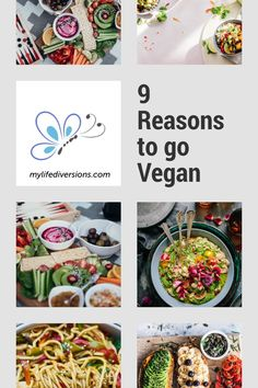 There are hundreds of reasons to go vegan, but the main ones are for your health, the animals and the environment. Why should you go vegan? Find out some hidden benefits that could shock you into changing the way you eat for the rest of your life! Vegan Snacks, Vegan Meals, Vegan Recipes Easy, Whole Food Recipes, Reasons To Go Vegan, Whole Foods Vegan, Vegan Meal Plans, Vegan Products, Vegan Lifestyle