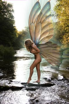 Fantasy is a necessary ingredient in living ~ Dr. Magical Creatures, Fantasy Creatures, Beautiful Creatures, Fantasy World, Fantasy Art, Fantasy Fairies, Water Fairy, Love Fairy, Beautiful Fairies