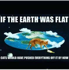"""19 Delightfully Amusing Animal Memes - Funny memes that """"GET IT"""" and want you to too. Get the latest funniest memes and keep up what is going on in the meme-o-sphere. Very Funny Pictures, Funny Animal Pictures, Funny Photos, Funny Cats, Funny Animals, Funny Jokes, It's Funny, Funny Logic, Funny Humour"""