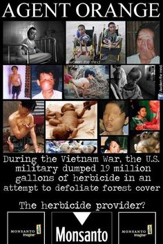 AGENT ORANGE. During the Vietnam War, the U.S. military dumped 19 million gallons of herbicide in attempt to defoliate forest cover. The herbicide provider is MONSOTO. Monsoto is responsible for the GMO's in our food.