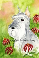 Miniature Schnauzer Silver Garden Rosy Coneflowers Dog Art ACEO Print