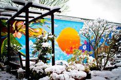Winter garden at Hobbs by Adam Streames