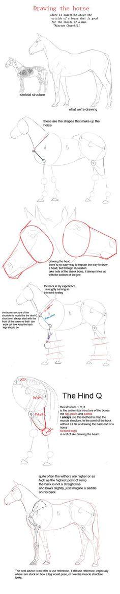 drawing a horse by YOB.deviantart.com on @deviantART