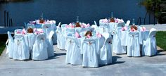 They are dedicated to offer inexpensive desk and chair covers. They are dedicated to providing Linen like chair covers at affordable rates.http://goo.gl/mvG6gR