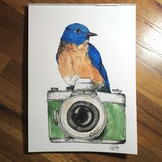 """Blue bird on 11""""x15"""" watercolor paper. For sale"""