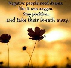 negative people start drama by bringing their negativity with them and trying to bring everyone else around the down. negative people love to start drama by making rude, cruel, hurtful remarks and by being snarky and sarcastic. Daily Quotes, Great Quotes, Life Quotes, Funny Quotes, Inspirational Quotes, Witty Quotes, Awesome Quotes, Quotable Quotes, Motivational Quotes