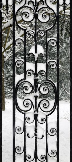 Wrought Iron Gate  http://www.superiorornamentalsupply.com/custom-services/custom-steel-forging.html