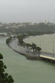 Tamaki Drive in Auckland. Photo / James Gibson