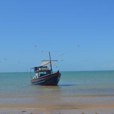 Bom dia!!! Dia de luz festa de sol Um barquinho a deslizar no macio azul do mar Tudo é verão amor se faz Num barquinho pelo mar que desliza sem parar. Nessa Bahia a vida é sempre verão.  #PeloMundoComVc  #PeloMundo #TopDestinos #DestinosdeViagem #BlogdeViagem #ViagensPeloMundo #ViagensIncriveis #Wanderluster #Viagem #Traveltips #DicasdeViagem #BlogMochilando #RepostBrasil  #mtur #Bahia #Salvador #VisiteBahia #viagemeturismo #Boipeba #Cairu