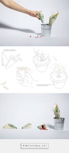 Plantamella sustainable packaging designed by Ginevra Franchi (Italy) - http://www.packagingoftheworld.com/2016/03/plantamella-concept.html