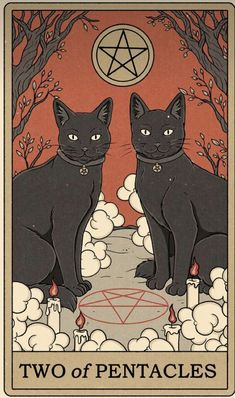 Spiritual Wallpaper, Witchy Wallpaper, Drunk Cat, Retro Background, Cat Posters, Cat Cards, Hippie Art, Cute Wallpapers, Illustration Art