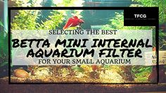 Mini filter makes for betta tanks