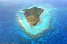 Short hike to top of Buck Island off St. Croix- went snorkeling here. Under water national park. Fantastic!