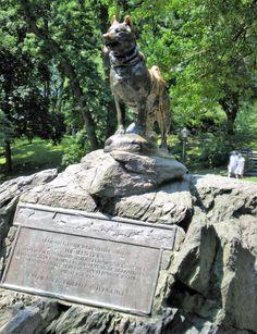 BALTO in Central Park