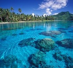 I was lucky enough to be able to visit the islands of French Polynesia including; Papeete, Tahiti, Moorea, and Bora Bora. This is Moorea, my absolute favorite island and it looked EXACTLY like this. Vacation Places, Dream Vacations, Vacation Spots, Places To Travel, Places To See, Travel Destinations, Rio, Society Islands, Polynesian Islands