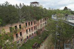 Les arbres poussant sur les toits des ruines du sanatorium Beelitz-Heilstätten à Beelitz, en Allemagne. | 18 lieux abandonnés et complètement envoûtants à travers le monde