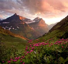 Mt Oberlin and Bird Woman Falls. Glacier National Park in the U. state of Montana Glacier National Park Montana, Glacier Park, Oh The Places You'll Go, Places To Travel, Places To Visit, Beautiful World, Beautiful Places, Beautiful Sunset, Amazing Places