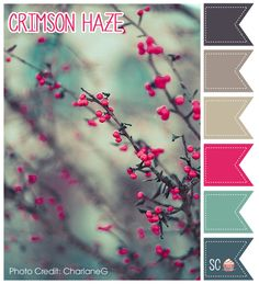 ❤ =^..^= ❤    Inspire Sweetness!: Crimson Haze - Color Palette