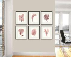 Sistema de impresión de arte náutico de arte coral de mar rojo de 6 antiguas impresiones de arte de la vida del océano océano decoración naturaleza playa impresión arte hogar decoración pared arte mar impresión