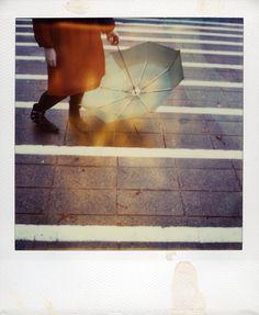 Polaroid 70 by Lloyd Hughes