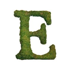 Lend a touch of personalized style to your mantel or console table with this lovely letter decor, artfully handcrafted from live moss.   ...