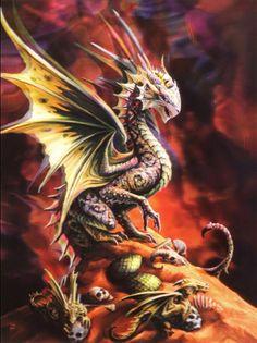 Metall Dose Feuerdrache Anne Stokes Schatulle Deko Geschenk Fire Dragon