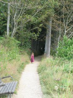 woods near Spottrup, Denmark