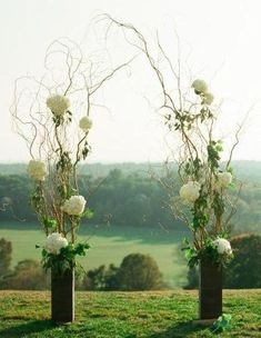 """This easy to do arch promises to make your day look like you spent 1,000 for your wedding decor. Put them in vases tie on flowers and greenery and Whala! You now have an Arch that will wow your guest! Cut Fresh for your order is (2) 7 foot (2) 5 foot and (2) 3 foot Curly Willow Branches 2) 6"""" x 6"""" x 24"""" Wood vases (Flo"""