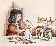 Terry and the Caterpillars by my vintage book collection (in blog form), via Flickr