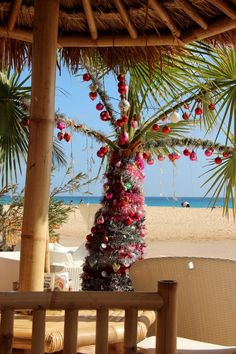 Christmas tree in Cape Verde :-D