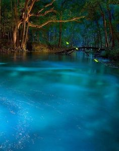 This natural spring looks like something out of a dream.  But it's real & you can visit it right here in the USA...