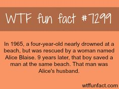 WTF Facts : funny, interesting & weird facts — Do you believe in Karma? - WTF fun fact