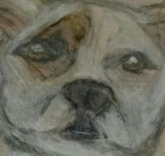 GEMMA -MY ALLIE'S AMERICAN BULLDOG PORTRAIT IN WATER COLOR AND CHALK