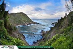 Tsitsikamma, Eastern Cape, South Africa    |                Book Now: http://www.airafrica.co.uk/destinations/south-africa?utm_source=pinterest&utm_campaign=tsitsikamma-eastern-cape-south-africa&utm_medium=social&utm_term=south-africa    |         #africa #flights #flightstosouthafrica #traveltrends #trendingdestinations #easterncape #southafrica #travel #travelphotography #travelafrica #travelblog #airfares #airafrica  #cheapflights #cheapflightstoafrica #cheapflightstosouthafrica…