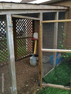 Construction d 39 un enclos pour poules lapins canards for Construire une porte
