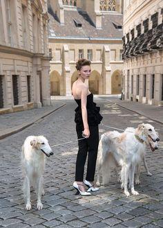 Spiel, Susanne - Borzois, II- 'Harpers Bazaar' (Dior-ad)