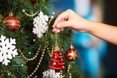 Cuando compramos el árbol y lo decoramos, no pensamos que al llegar la Navidad, ya va a estar seco. Sigue este paso a paso y aprende cómo mantener tu árbol de navidad fresco por más tiempo.