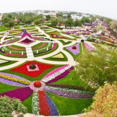 Lindo Jardim Colorido