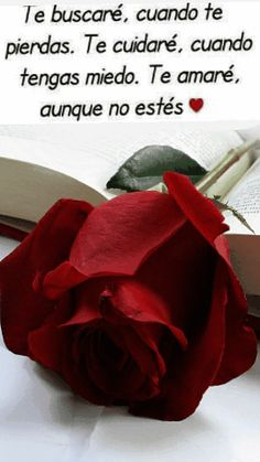 y sabes que Te amo,aunque,no lo merezcas.❤ Spanish Inspirational Quotes, Spanish Quotes, Cute Love Gif, Love Is Sweet, Amor Quotes, Love Quotes, Mistress Quotes, Love Wallpaper Backgrounds, I Love You Drawings