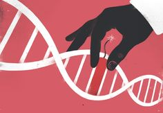 A powerful gene-editing technology is the biggest game changer to hit biology since PCR. But with its huge potential come pressing concerns.