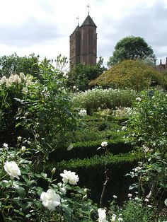 Vita Sackville West's famous White Garden at Sissinghurst Castle ,Kent, England