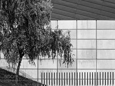 ...about the Beauty of Loneliness - Pinned by Mak Khalaf Abstract abstractarchitectureartbeautyblack and whitefractalsgeometricsgeometrylineslonelinessnaturepatternpatternsphitreeurban by Cesar_Bazkez