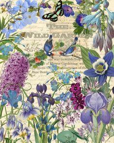 Hummingbird Garden II Artist: Studio Voltaire