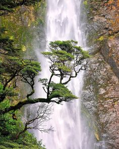 Devil's Punchbowl Falls with ARTHUR'S PASS NATIONAL PARK....a park of mostly mountainous terrain located on the South Island of New Zealand....established in 1929....the South Island's first national park and New Zealand's third