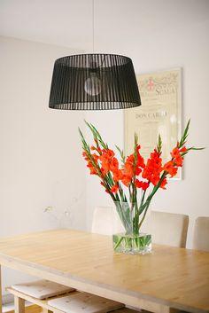 gladiolus, flower, interior lufcik blog