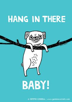 hang in there - Buscar con Google