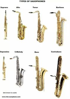 Saxophone types, with the 4 more common ones shown on the top row) Saxophone Notes, Saxophone Instrument, Saxophone Sheet Music, Saxophone Music, Soprano Saxophone, Saxophone Players, Baritone Sax, Jazz Instruments, Elevator Music