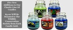 5 new charity candles