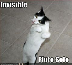 Invisible  Flute Solo. No. He is holding it wrong.